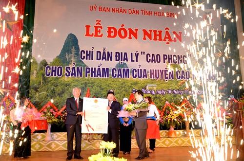 Đón nhận chỉ dẫn địa lý cam Cao Phong
